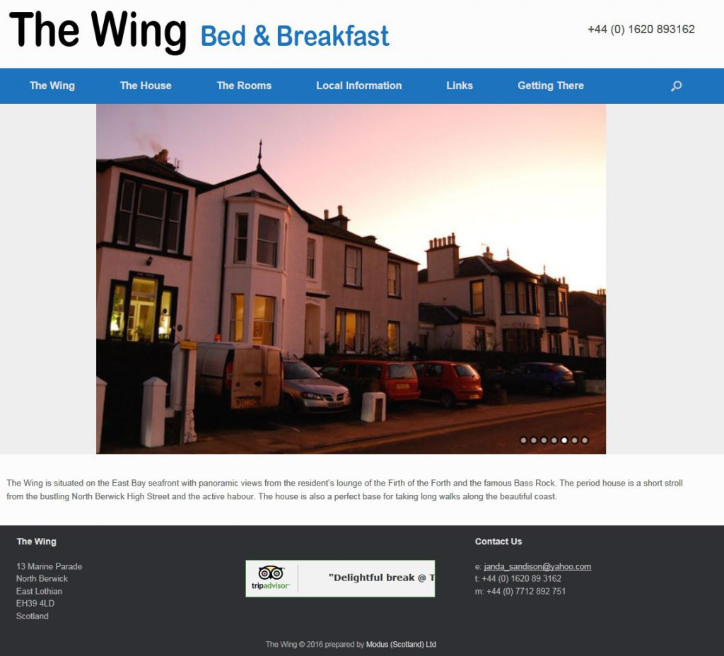 wing2JPG